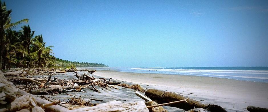 Portete: Leere Strände bis zum Horizont gesäumt von Kokospalmen (Foto: Estefanía Cuevas Wilcox)