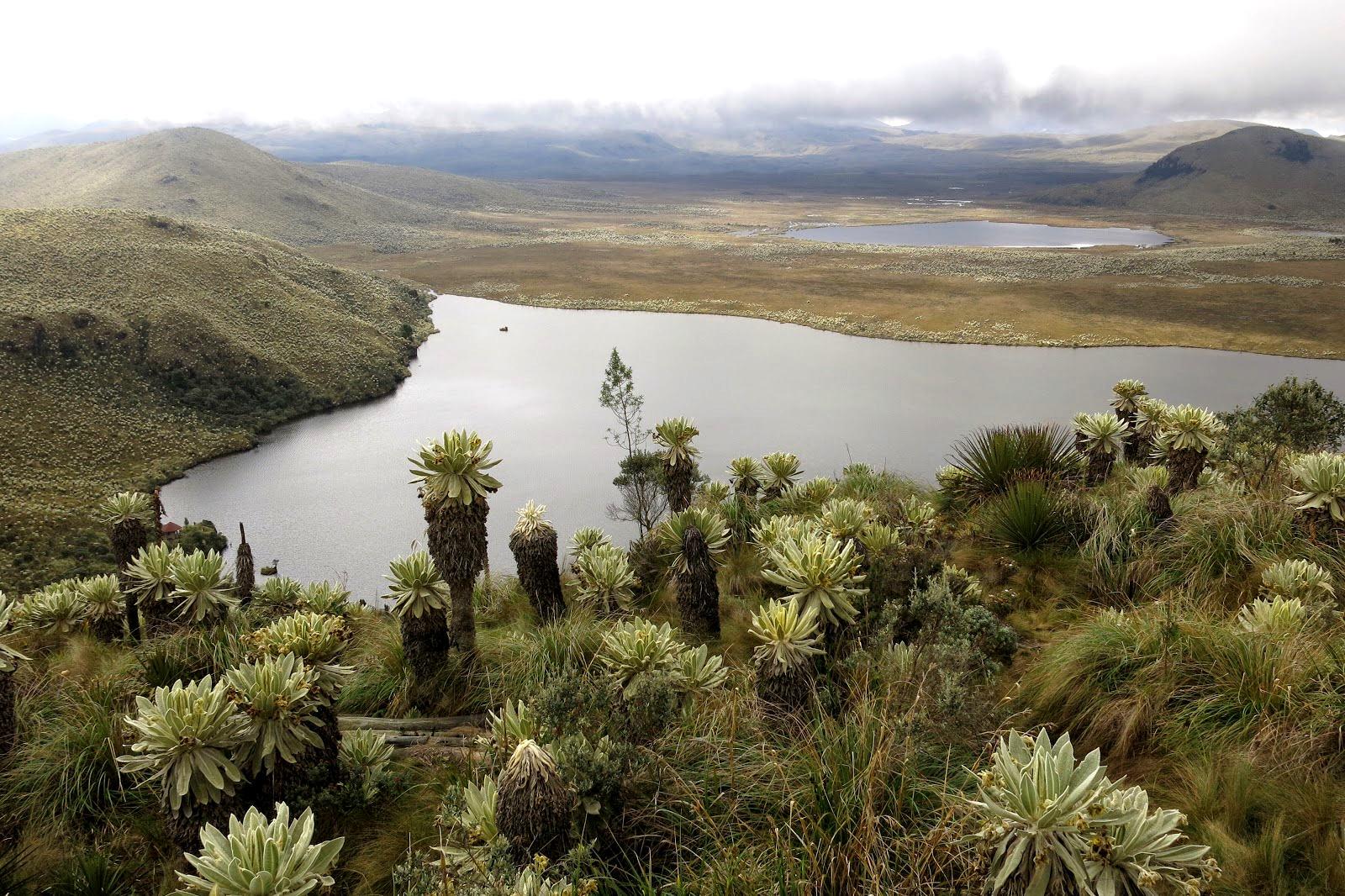 Ecuador, El Angel Nationalpark, Lagune