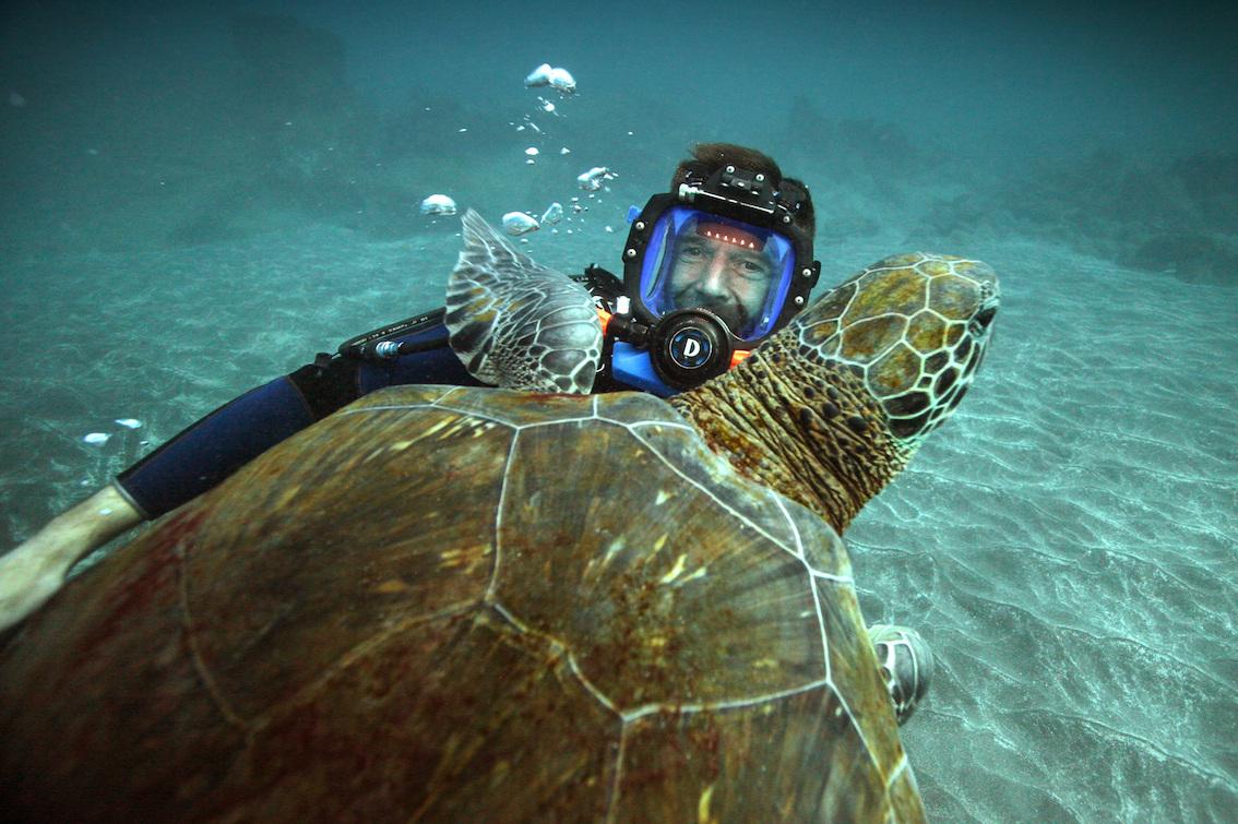 Dirk Steffens hautnah mit einer Meeresschildkröte
