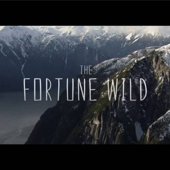 the fortune-wild-video-surfing